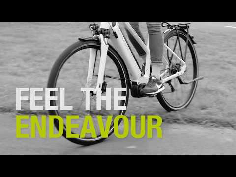 KALKHOFF // Feel the Endeavour