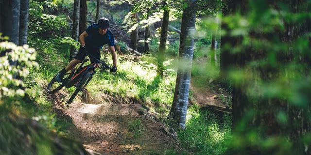 Ein eMTB für alle Fälle: Trails, Offroadtouren und ausreichend Uphill-Flow mit dem Shimano E8000.